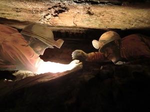 竜ヶ岩洞 展示 自由研究